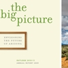 Flinn Foundation - The Big Picture - annual report
