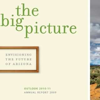 Flinn Foundation - The Big Picture annual report